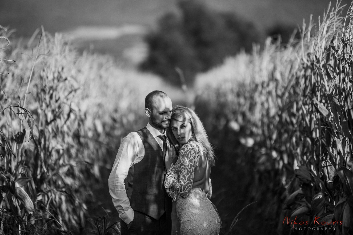 Dimitris & Dafni's wedding story…